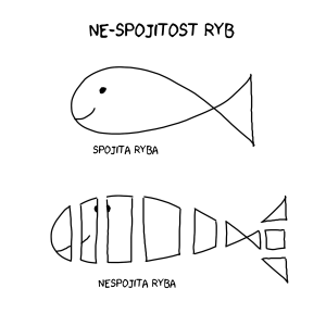 ne_spojita_ryba